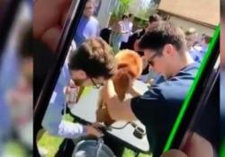 Cagnolino costretto a bere birra per uno scherzo tra studenti e la rete si indigna Le immagini sono state riprese a New York, durante la festa di una confraternita universitaria - Corriere Tv