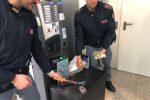 """Colpi in serie nelle scuole, arrestato il """"ladro di merendine"""" di Reggio Calabria"""