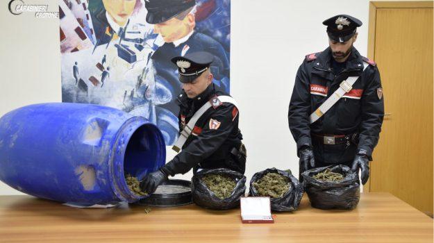 arresto crotone, droga crotone, Catanzaro, Calabria, Cronaca