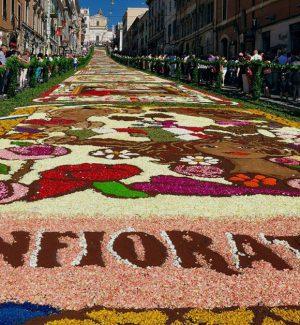 L'Infiorata di Noto, omaggio ai siciliani d'America: diretta su Rtp e streaming su Gazzettadelsud.it