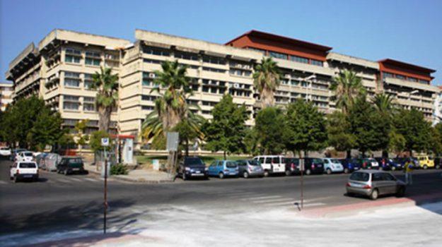 concorsone cosenza, Cosenza, Calabria, Cronaca