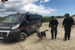 Allevatori scomparsi a Pasqua a Petilia Policastro, ricerche estese anche a Mesoraca