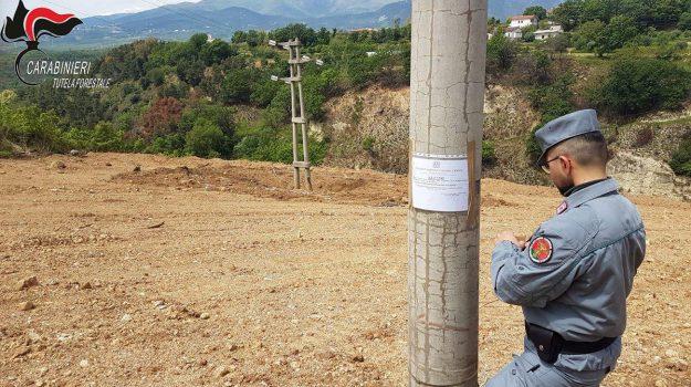 terreno sequestrato castrovillari, Cosenza, Calabria, Cronaca