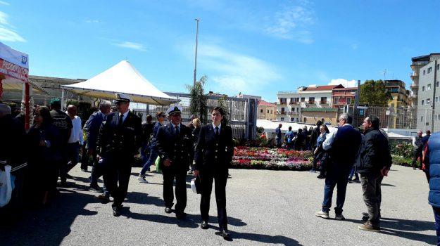 fiera crotone, porto crotone, Catanzaro, Calabria, Cronaca