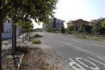 Decoro urbano, continuano i lavori a Corigliano Rossano: tagliate le erbacce a villa Sant'Antonio e Frasso - Foto