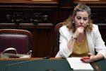 Decreto Calabria, dopo il sì in Senato per i precari arriva la proroga fino a fine anno