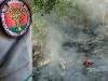 Incendi boschivi, a Vibo sanzioni per oltre 4 mila euro