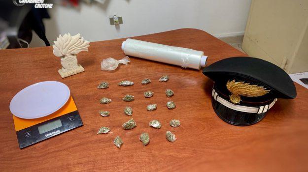 marijuana cutro, Catanzaro, Calabria, Cronaca
