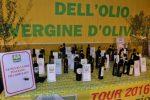 Olio d'oliva, in Calabria crolla la produzione: -69% nell'ultimo anno