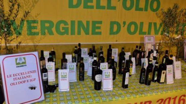 agea, coldiretti, importazione, ismea, olio d'oliva, olio extracomunitario, Franco Aceto, Giuseppe Oliva, Calabria, Economia