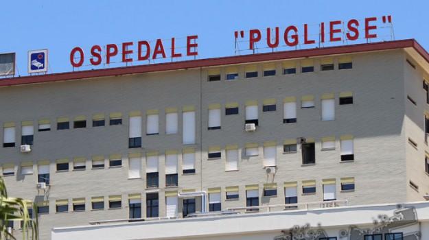 ospedale pugliese, Catanzaro, Calabria, Economia