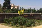 """In Calabria un Ferragosto senza sagre, Coldiretti: """"Ma ci sono i mercati di Campagna Amica"""""""