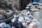 Cosenza, rifiuti abbandonati: multati molti incivili