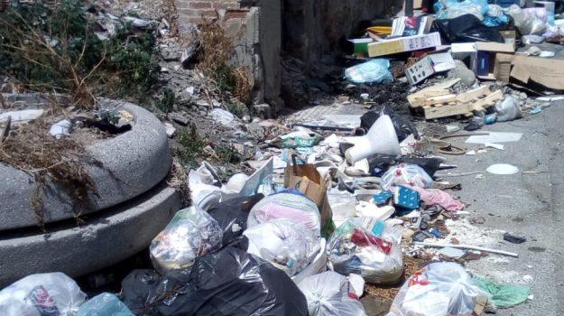 cosenza, multe, rifiuti abbandonati, sanzioni, Cosenza, Calabria, Cronaca