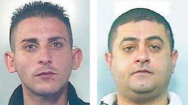 'ndrangheta rosarno, clan cacciola, clan grasso, inchiesta ares, Reggio, Calabria, Cronaca