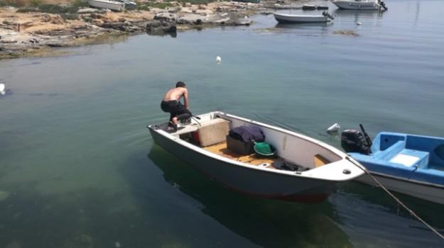 capo rizzuto, crotone, pesca abusiva di ricci, ricci di mare, sanzioni amministrative, Catanzaro, Calabria, Cronaca