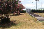 Messina, Villa Dante ancora trascurata: erba troppo alta e rifiuti sul prato - Foto
