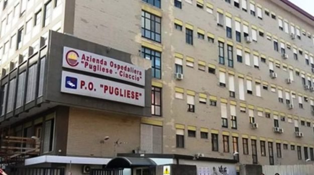 assenteismo, ospedale, pugliese ciaccio, Catanzaro, Calabria, Cronaca