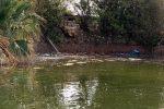 Messina, l'Arpa conferma: liquami fognari nel lago di Ganzirri