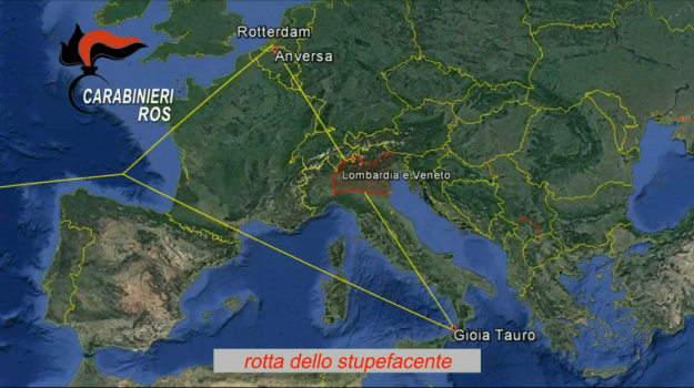 'ndrangheta, colombia, droga calabria, ecuador, operazione edera, Reggio, Calabria, Cronaca