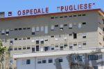 Catanzaro, l'ospedale Pugliese rafforza Microbiologia: assunti cinque biologi