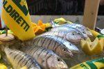 I segreti per scegliere il pesce fresco