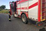 Incendio su una collina di San Lucido lungo la statale 107, boschi distrutti e traffico paralizzato