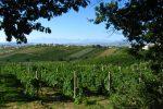 Sicilia sul podio per i tour enogastronomici in Italia