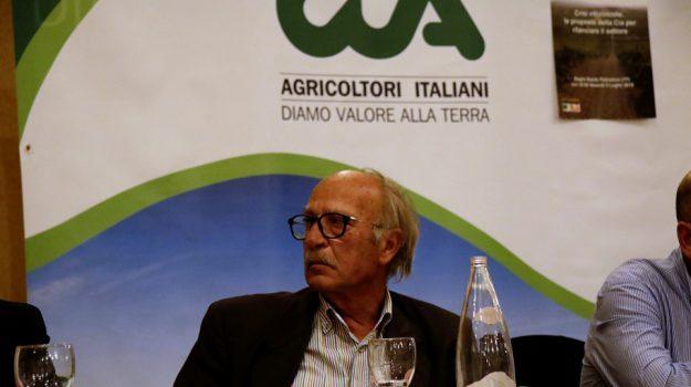 frodi alimentari, Antonio Cossentino, Sicilia, Economia