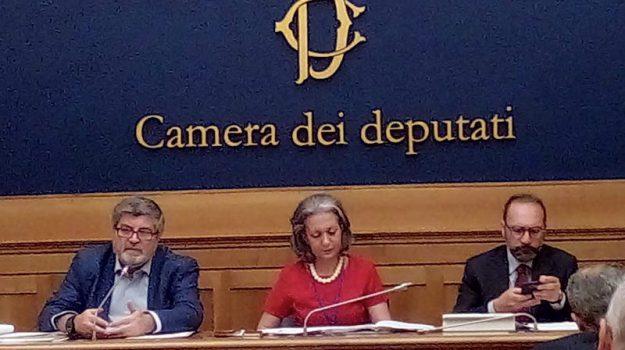 m5s, tribunale di Lamezia, ufficio esecuzioni, Giuseppe d'Ippolito, Catanzaro, Calabria, Politica