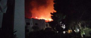 """Incendi, evacuato il villaggio """"Calampiso"""" a San Vito: roghi anche nel Palermitano"""