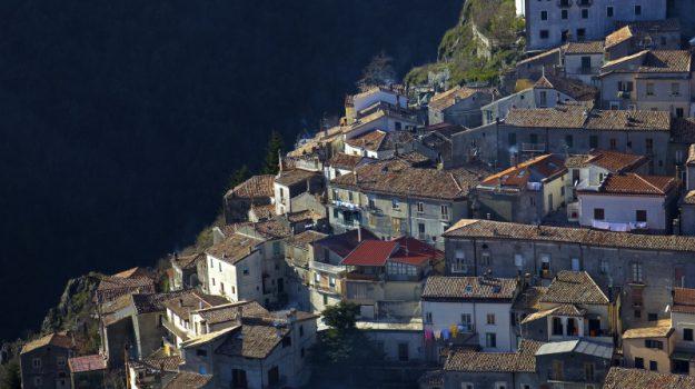 cosenza, fitta vegetazione, Macchia della Tavola, rischio allagamento, Cosenza, Calabria, Cronaca