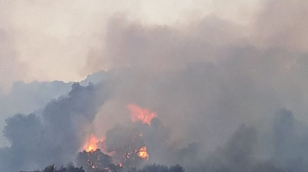 calabria, piano antincendio boschivo, Calabria, Cronaca