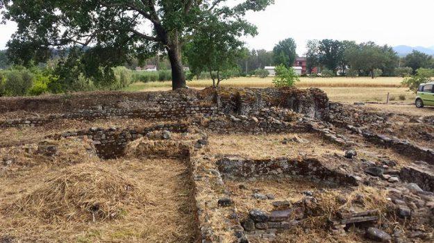 archeologia, Sito di Pauciuri, Taliano Grasso, Cosenza, Calabria, Cultura
