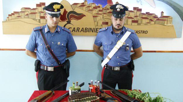armi nascoste, marijuana, petilia policastro, Catanzaro, Calabria, Cronaca