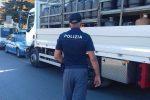Falcone, 800 chili di bombole di gpl in un deposito abusivo: sequestro e denuncia