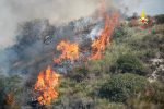 Montagne a fuoco a Stalettì e Catanzaro, domati due incendi