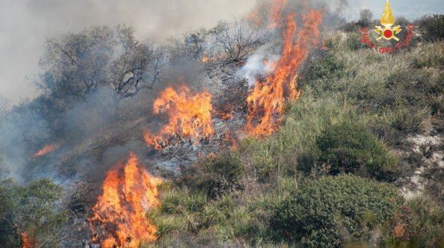 incendi, sant'agata d'esaro, tribunale, Antonio Servidio, Cosenza, Calabria, Cronaca