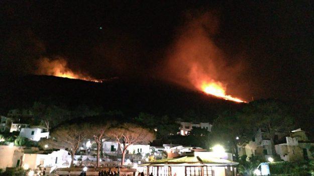 incendi sicilia, Nello Musumeci, Sicilia, Cronaca