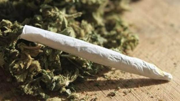capo d'orlando, cocaina, marijuana, Messina, Sicilia, Cronaca
