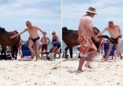 Non toccare il cavallino selvatico sulla spiaggia Il video dall'isola di Assategue, negli Usa - CorriereTV