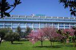 Manca il personale all'ospedale di Lamezia, interrotti alcuni ambulatori specialistici