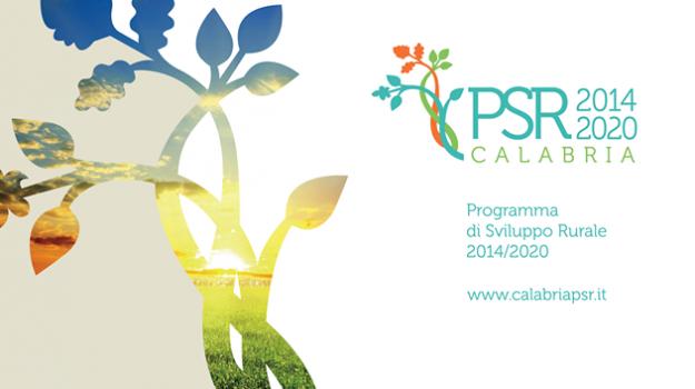 Dipartimento agricoltura, Psr Calabria 2014/2020, Calabria, Economia