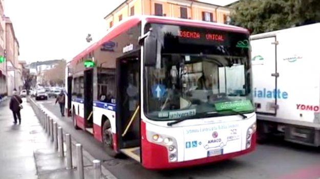 trasporti, Giuseppe d'Ippolito, Cosenza, Calabria, Economia