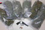 Coltivava una piantagione di cannabis a Curinga, arrestato un uomo di 48 anni