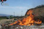 Combustione illecita di rifiuti, una denuncia a Torano Castello: sanzioni per oltre 8mila euro