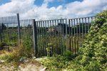 Patrimonio archeologico di Vibo inaccessibile: viaggio tra rovi e dimenticanze - Foto