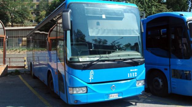 programma pluriennale trasporto pubblico, trasporto pubblico Calabria, Calabria, Economia
