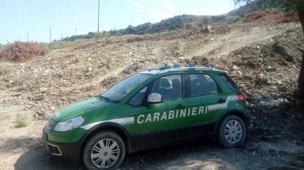 denunce Rossano, lavori abusivi Rossano, sequestro macchia mediterranea, Cosenza, Calabria, Cronaca