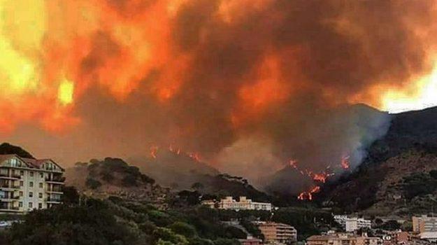 incendi in Sicilia, roghi nel palermitano, vegetazione distrutta, Antonella De Miro, Filippo Principato, Michele Pennisi, Nello Musumeci, Nicola Rizzo, Sicilia, Cronaca